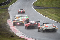 A group of GT Racing Cars